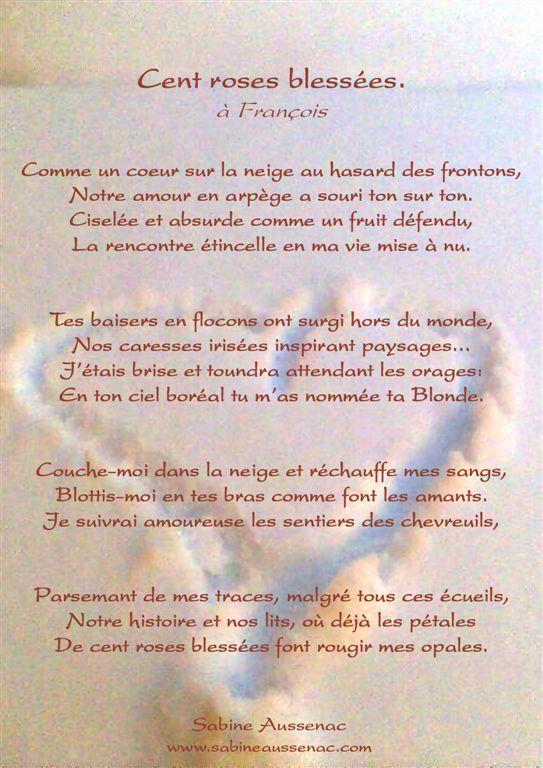 Avent Au Dessus Dun Million De Toits Roses Sabine Aussenac
